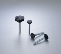 Adapter screw