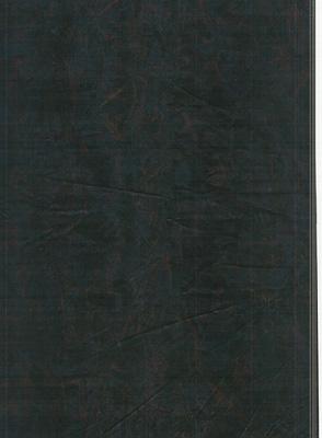 Wood Grain Decorative Paper/Melamine Paper/PVC/PETG Film- Fallen Leaves