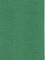 Wood Grain Decorative Paper/Melamine Paper/PVC/PETG Film- Spring