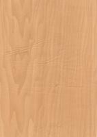Wood Grain Decorative Paper/Melamine Paper/PVC/PETG Film- Shine Maple