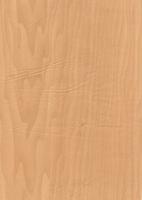Wood Grain Decorative Paper/Melamine Paper/PVC/PETG Film- Shine Maple