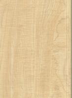Wood Grain Decorative Paper/Melamine Paper/PVC/PETG Film- Maplee