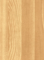 Wood Grain Decorative Paper/Melamine Paper/PVC/PETG Film- Beech