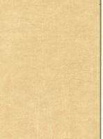 Wood Grain Decorative Paper/Melamine Paper/PVC/PETG Film- Leather