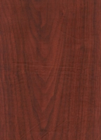 Wood Grain Decorative Paper/Melamine Paper/PVC/PETG Film- Roman Walnut