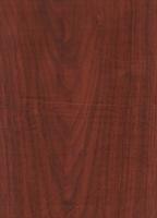 Wood Grain Decorative Paper/Melamine Paper/PVC/PETG Film- Roman Walnut
