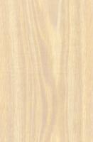 Wood Grain Decorative Paper/Melamine Paper/PVC/PETG Film- White Oak