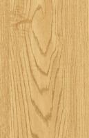 Wood Grain Decorative Paper/Melamine Paper/PVC/PETG Film- Great Oak