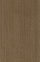 Wood Grain Decorative Paper/Melamine Paper/PVC/PETG Film- Woody Line