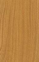 Wood Grain Decorative Paper/Melamine Paper/PVC/PETG Film- Sen Spirit