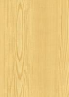 Wood Grain Decorative Paper/Melamine Paper/PVC/PETG Film- Pine