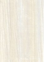 Wood Grain Decorative Paper/Melamine Paper/PVC/PETG Film- Ash