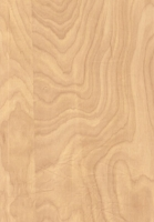 Wood Grain Decorative Paper/Melamine Paper/PVC/PETG Film- Elm