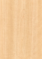 Wood Grain Decorative Paper/Melamine Paper/PVC/PETG Film- Birch