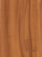 Wood Grain Decorative Paper/Melamine Paper/PVC/PETG Film- Camphor