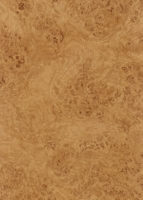 Wood Grain Decorative Paper/Melamine Paper/PVC/PETG Film- Rustic Burl