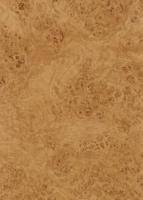 Wood Grain Decorative Paper/Melamine Paper/PVC/PETG Film- Rustic Burl