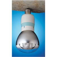 Energy-saving, Long Life Compact Fluorescent Lamps