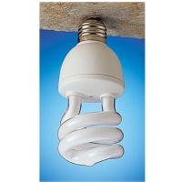 Energy-saving, Long Life Compact Fluorescent Lamps