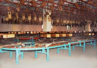X-458 Pallet Coating Conveyor
