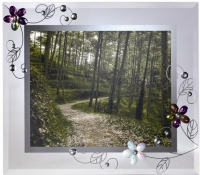 Romantic mirror frame(Transparent)