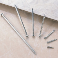 Grooved Steel Nails/Steel concrete nail