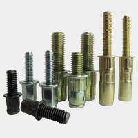 Bolt Rivet Nut