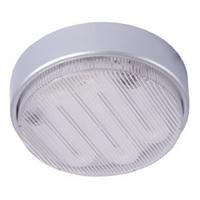 energy saving ceiling light