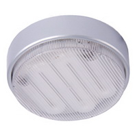 energy saving ceiling light