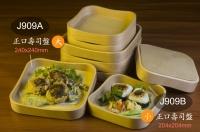 Square Sushi Trays