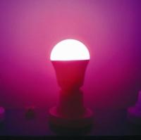 LED灯具 / 其他特殊功能灯具