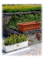 Rectangular box planters