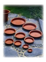 Saucer for nursery pot