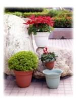 Garden Planters