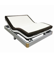 Multi-functional Electric Bed GM09D-1 (Double)