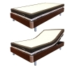 Simplicity Style Electric Bed GM07S