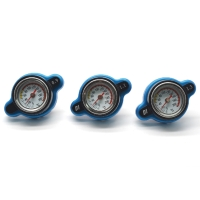 Safety Thermo Radiator Cap