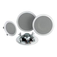 Ceilling Speaker
