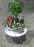 Multifunctional K/D Flower Rack