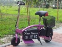 Mini e-rider