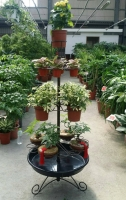 Cens.com Multifunctional K/D Flower Rack LI PAO FU INDUSTRIAL CO., LTD.