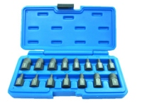 Screw Extractor (15 pcs)