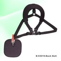 BackBelt