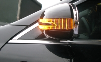 Door Mirror Cover W/light (arrow type) + Manner Light