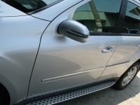 Door Mirror Cover W/light (arrow type) +