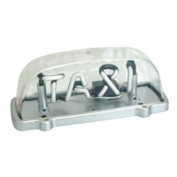 Neon Taxi Light