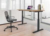 Adjustable K/D Computer Tables