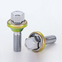 Adjustable Bolt