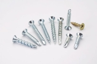 Window Screws