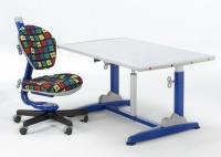 Height Adjustable Desk + Swivel Chair